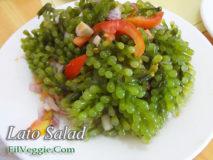Lato Salad (Seaweed Salad)