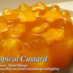 Tropical Custards
